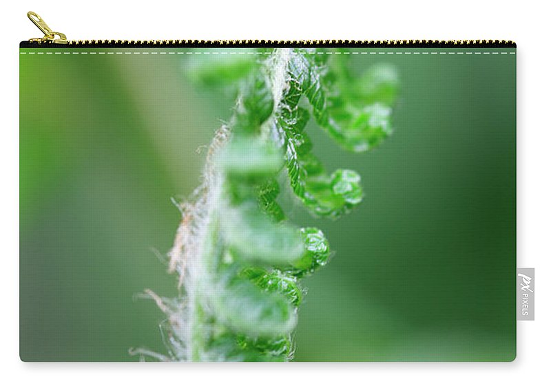 Bracken Fern Carry-all Pouch featuring the photograph New Bracken Fern by Neil Overy