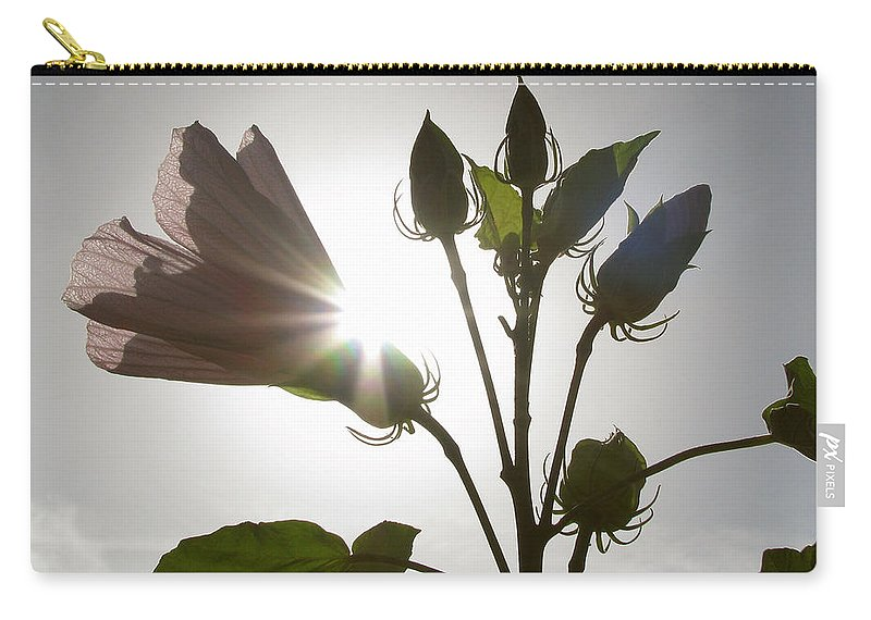 Nature Carry-all Pouch featuring the photograph New Day by Peg Urban