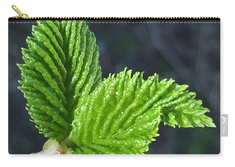 Leaf Carry-all Pouch featuring the photograph New Leaves by Vonda Drees