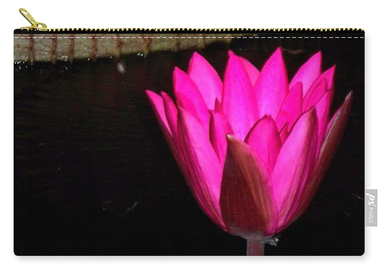 Photograph Carry-all Pouch featuring the photograph Night Time Lily Monet by Eric Schiabor