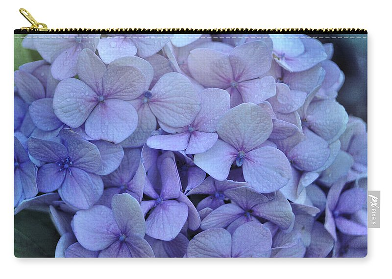 Cape Cod Carry-all Pouch featuring the photograph Nikko Blue Petals by JAMART Photography
