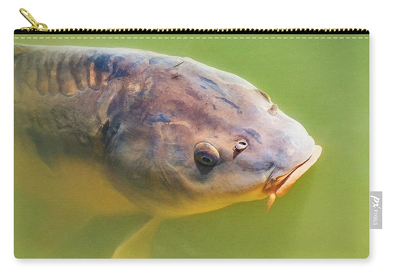 Carp Carry-all Pouch featuring the photograph No Bread Today by Steve Taylor