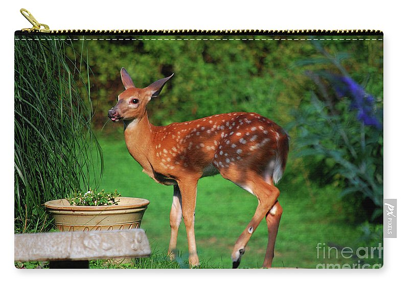 Fawn Carry-all Pouch featuring the photograph No I'm Not Bambi by Lori Tambakis