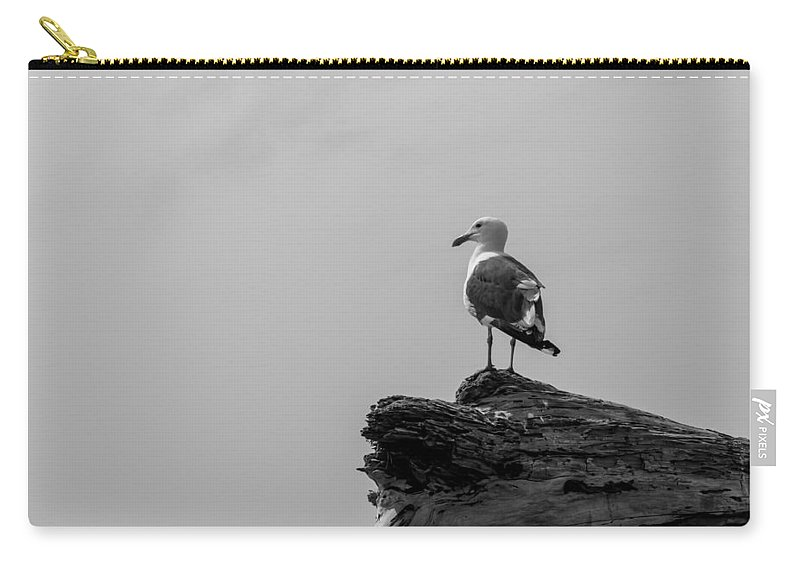 Emma Wood Carry-all Pouch featuring the photograph Gull On Driftwood Bw by Patti Deters