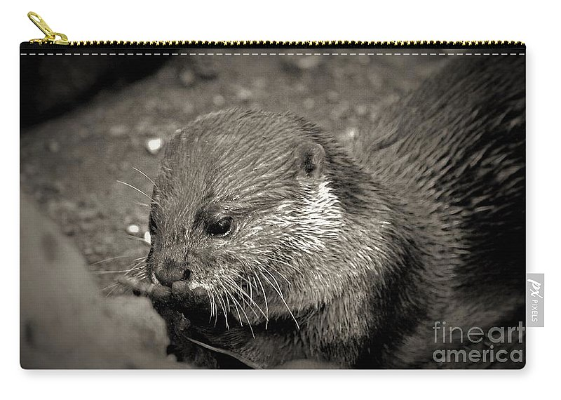 Nom Nom Nom Carry-all Pouch featuring the photograph Nom Nom Nom by Patti Whitten