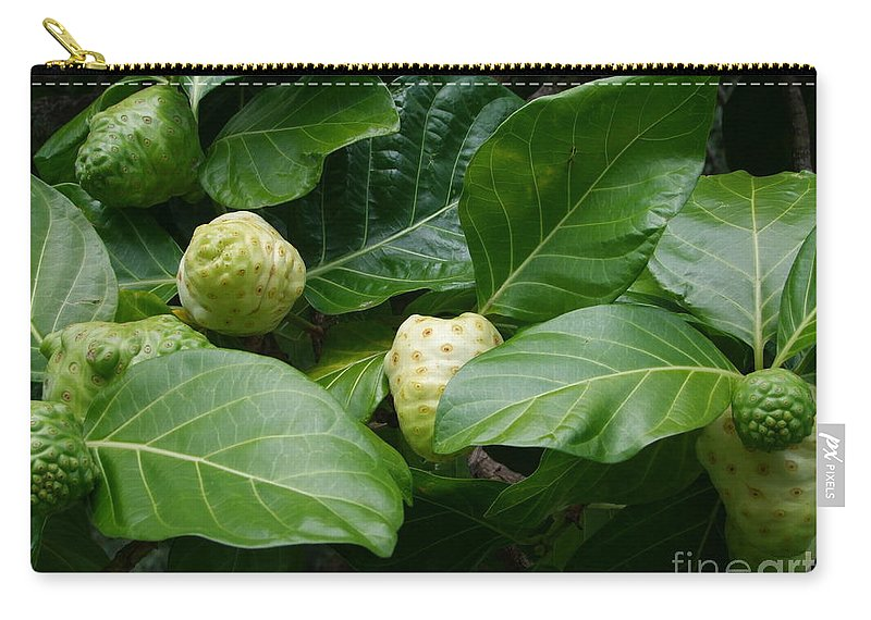 Green Carry-all Pouch featuring the photograph Noni by Mary Deal