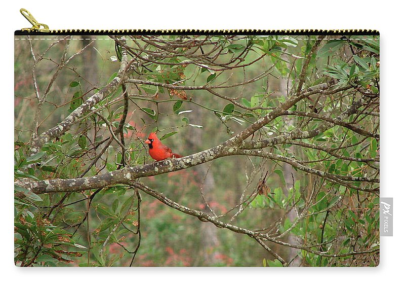 North Carry-all Pouch featuring the photograph North Carolina Cardnial by Brett Winn