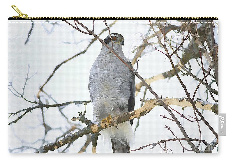 Carry-all Pouch featuring the photograph Northern Goshawk by Deborah Benoit