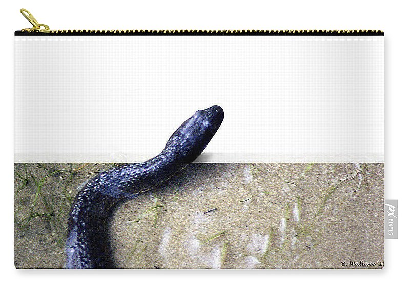 2d Carry-all Pouch featuring the photograph Northern Water Snake by Brian Wallace