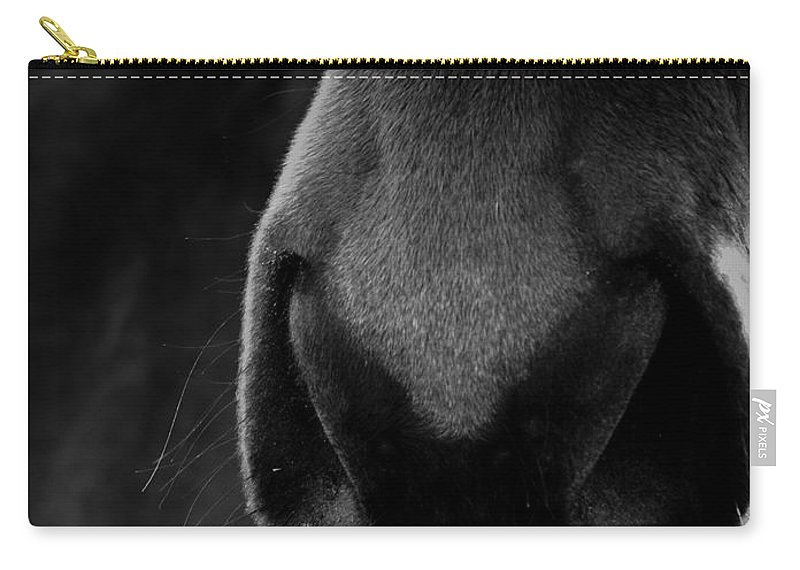 Horse Carry-all Pouch featuring the photograph Nose Best by Hannah Breidenbach