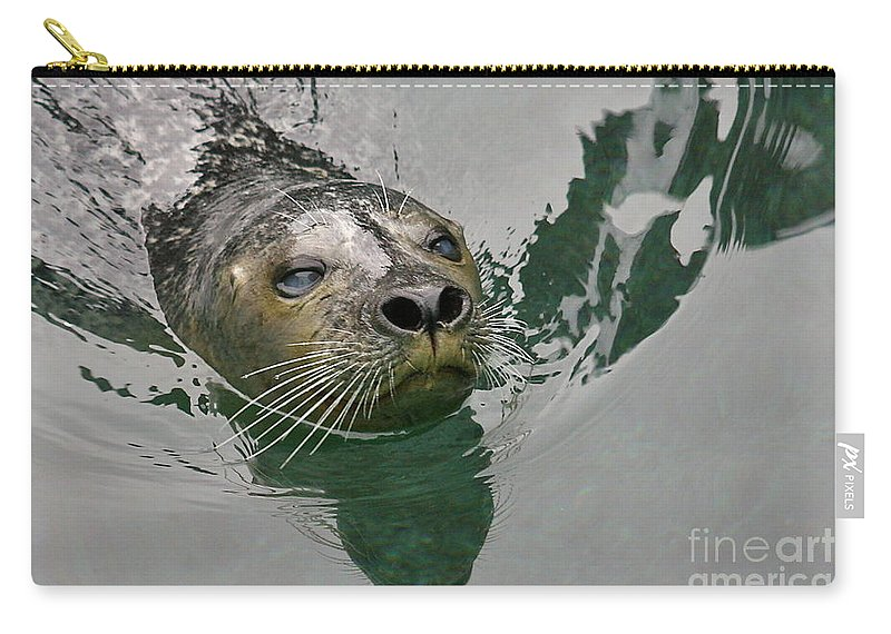 Sea Lion Carry-all Pouch featuring the photograph Nosey by Rick Monyahan