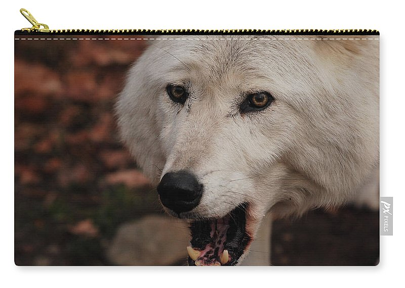 Wolf Carry-all Pouch featuring the photograph Not A Happy Face by Lori Tambakis