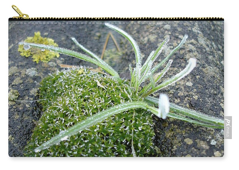 Green Carry-all Pouch featuring the photograph Not Quite A Roof Garden by Susan Baker