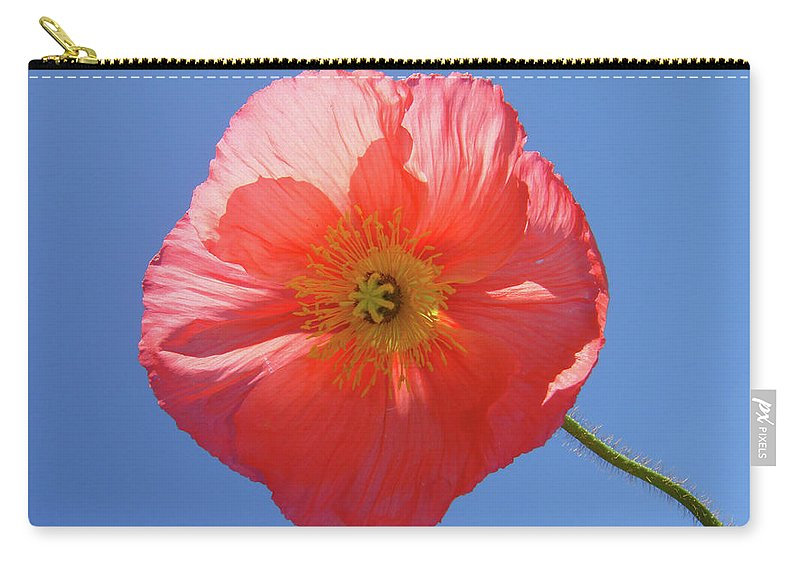Poppy Carry-all Pouch featuring the photograph Nothing But Blue Skies by Donna Blackhall