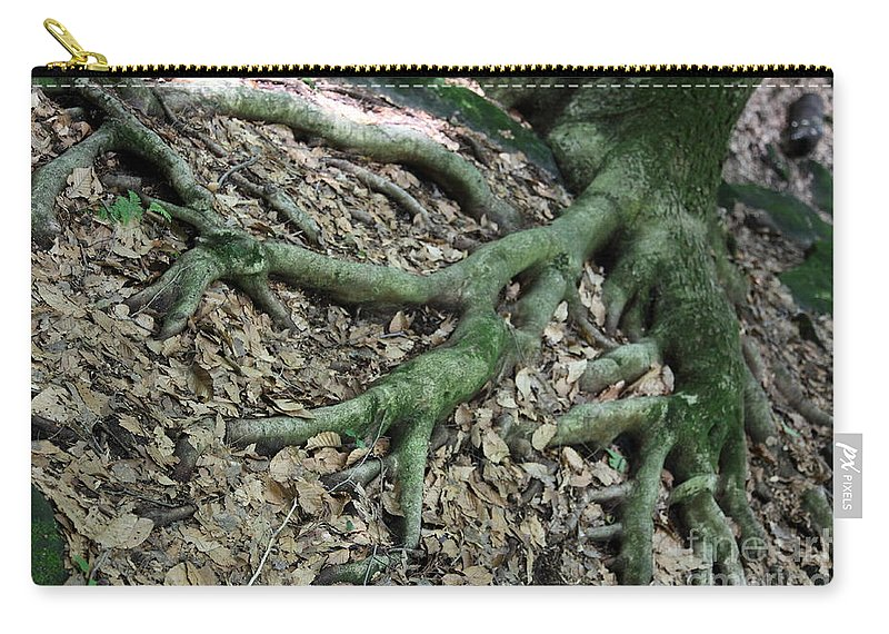 Trees Carry-all Pouch featuring the photograph Nourishment by Amanda Barcon