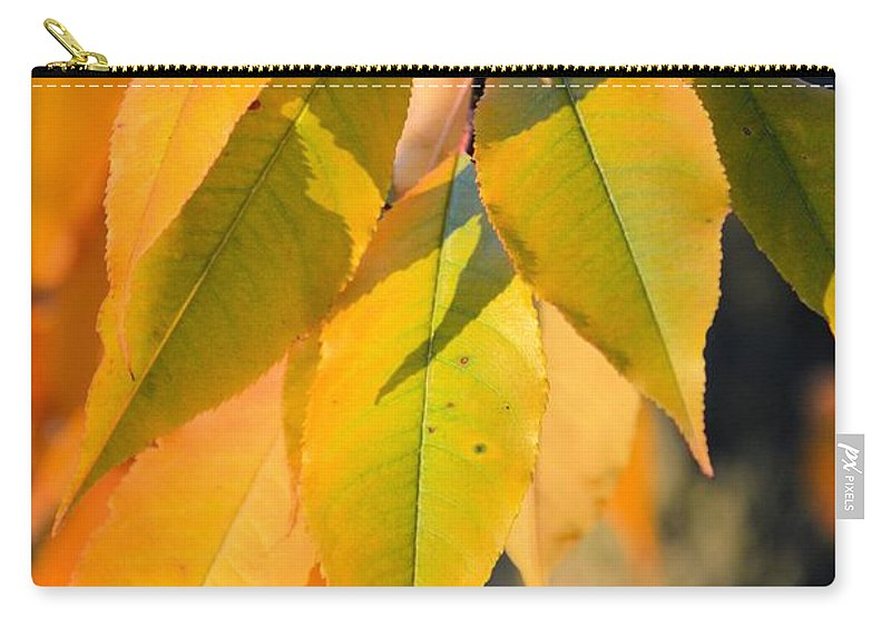 Colors Carry-all Pouch featuring the photograph November Colors by Bonfire Photography