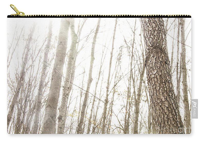 Trees Carry-all Pouch featuring the photograph November Comes by Hal Halli