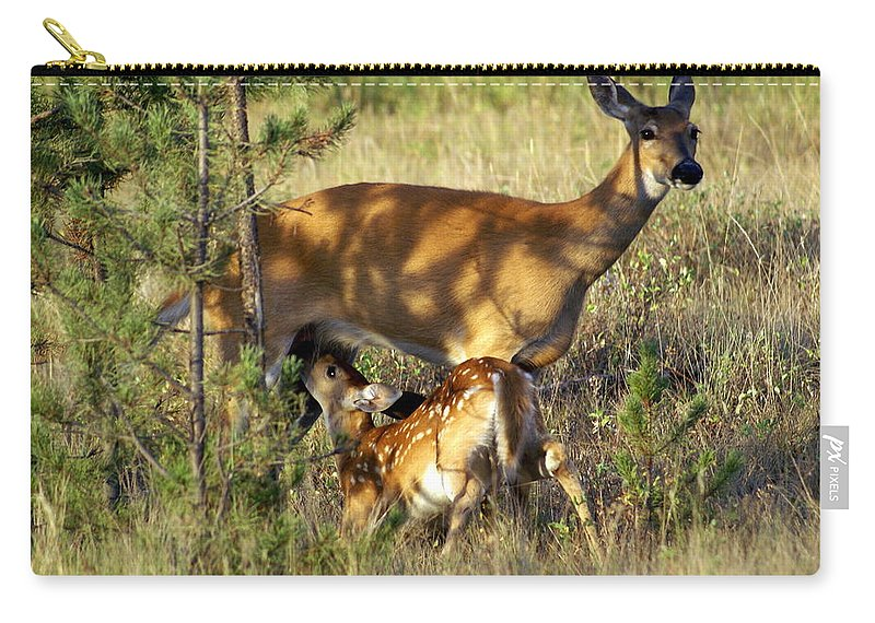 Deer Carry-all Pouch featuring the photograph Nursing Fawn by Marty Koch