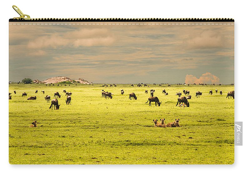 Migration Carry-all Pouch featuring the photograph Oblivious Of The Danger by Patrick Kain