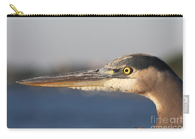 Heron Carry-all Pouch featuring the photograph Observant Eye - Heron Portrait by Christiane Schulze Art And Photography