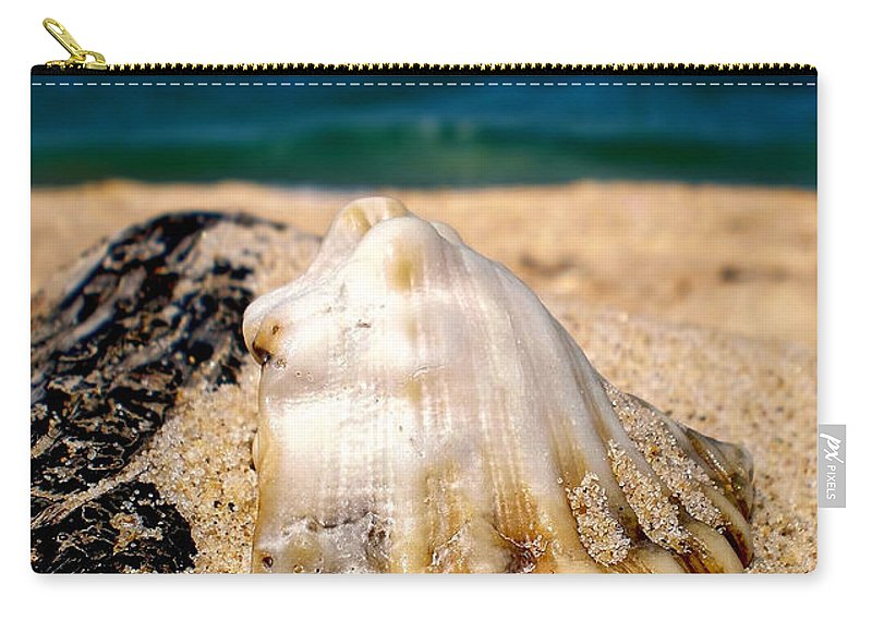 Photography Carry-all Pouch featuring the photograph Ocean Beyond A Shell by Kaye Menner