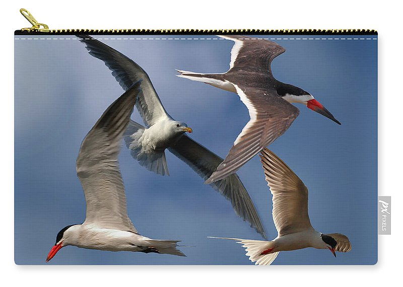 Sea Bird Collage Carry-all Pouch featuring the photograph Ocean Bird Collage by David Salter