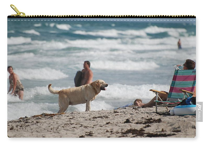 Waves Carry-all Pouch featuring the photograph Ocean Dog by Rob Hans