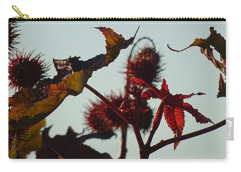 October Carry-all Pouch featuring the digital art October Light by Marc Dettloff