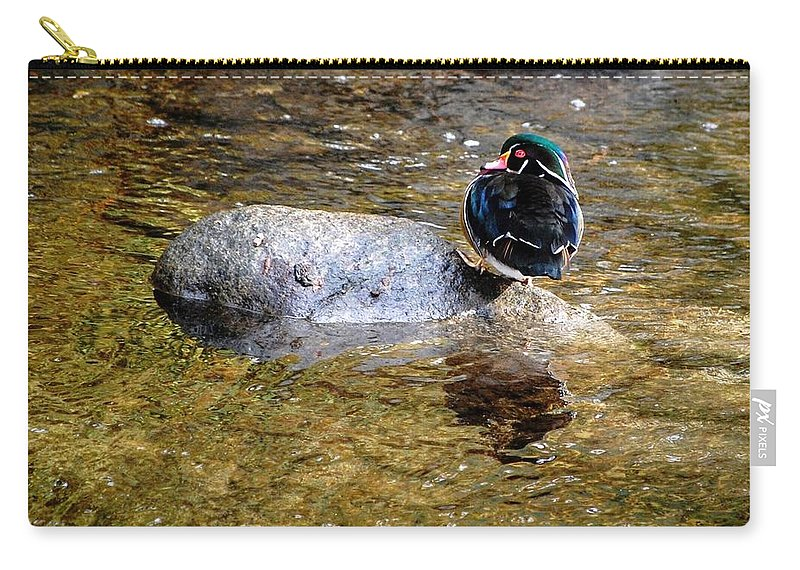 Birds Carry-all Pouch featuring the photograph Off Kilter by AJ Schibig