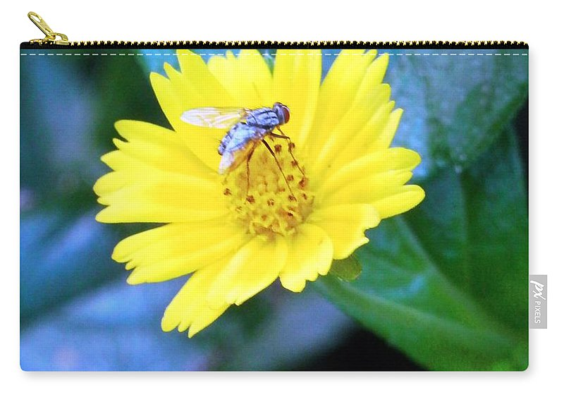 #fly Resting On A Bright Carry-all Pouch featuring the photograph Oh My A Fly by Belinda Lee