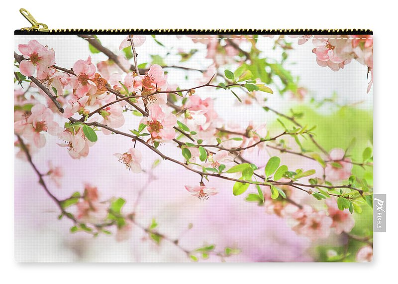 Blossoms Carry-all Pouch featuring the photograph Oklahoma Spring by Toni Hopper