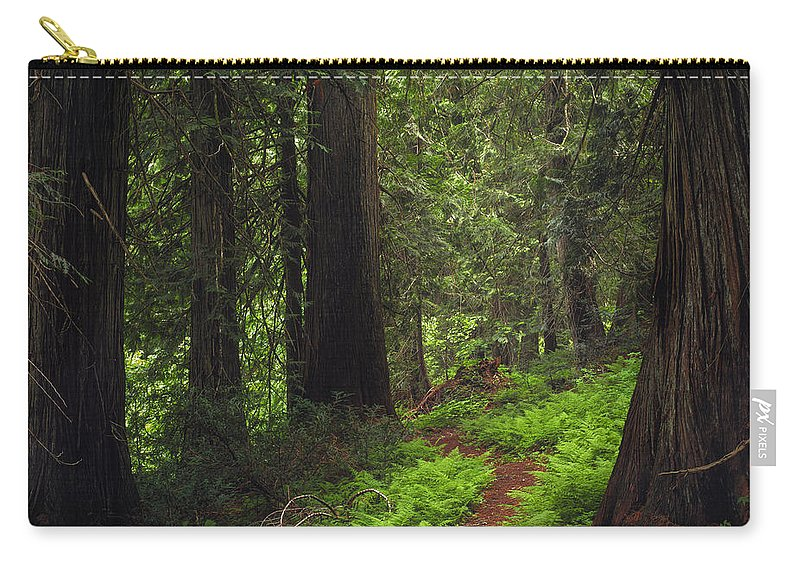 Idaho Scenics Carry-all Pouch featuring the photograph Old Growth Cedars by Leland D Howard