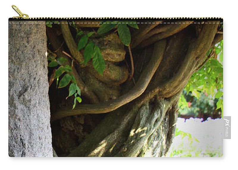 Wisteria Carry-all Pouch featuring the photograph Old Wisteria by Tina Meador
