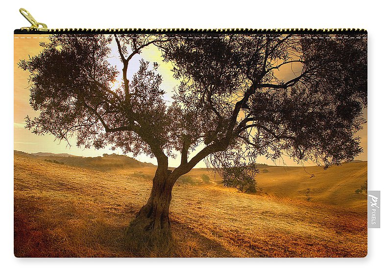 Landscape Carry-all Pouch featuring the photograph Olive Tree Dawn by Mal Bray