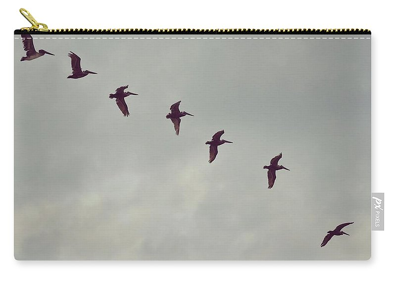 Bird Carry-all Pouch featuring the photograph On A Mission by JAMART Photography