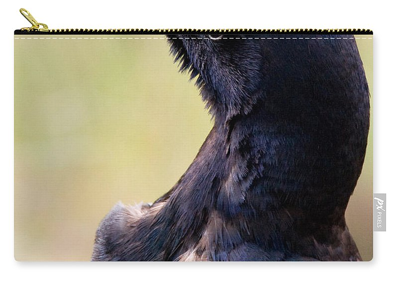 Bird Carry-all Pouch featuring the photograph On Alert by Christopher Holmes