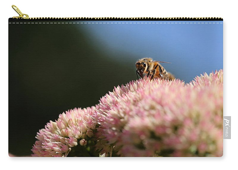 Bee Carry-all Pouch featuring the photograph On Flower Mountain by Angela Rath