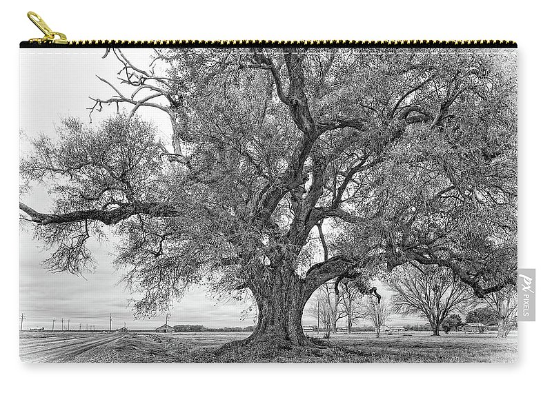 Delta Carry-all Pouch featuring the photograph On The Delta Monochrome by Steve Harrington