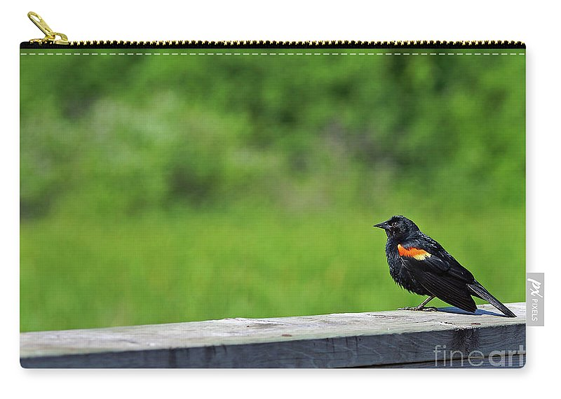 Red Carry-all Pouch featuring the photograph On The Fence by Robin Clifton