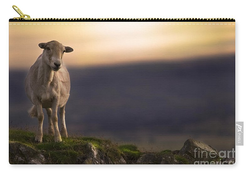 Sheep Carry-all Pouch featuring the photograph On The Top Of The Hill by Angel Ciesniarska
