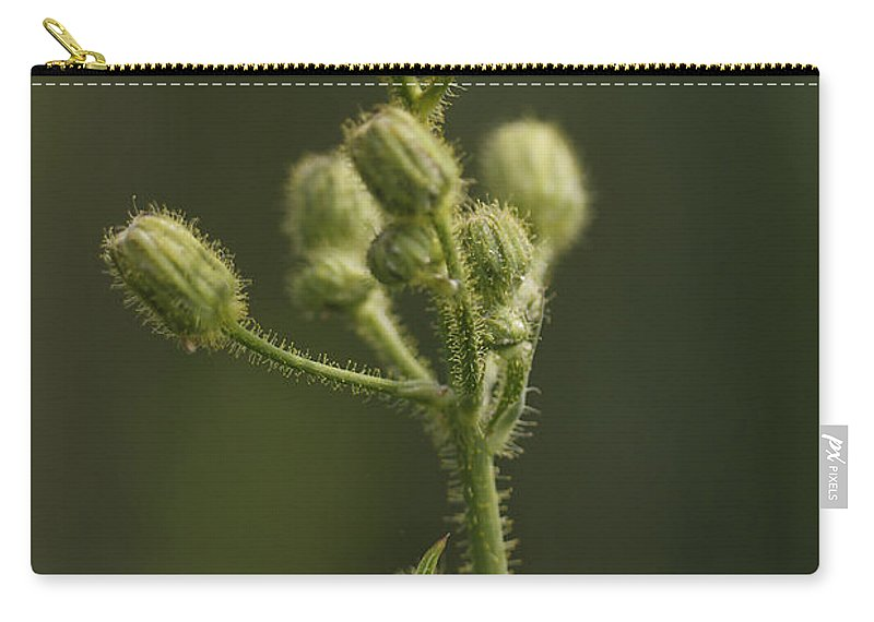 Flower Carry-all Pouch featuring the photograph On The Wild Side by Deborah Benoit