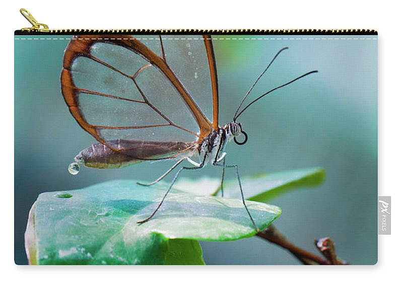 Butterfly Carry-all Pouch featuring the photograph On Top Of The World by Jorn Van Hezik