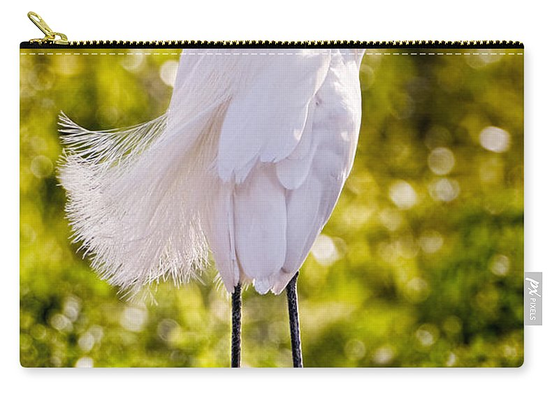 snowy Egret Carry-all Pouch featuring the photograph On Watch by Christopher Holmes