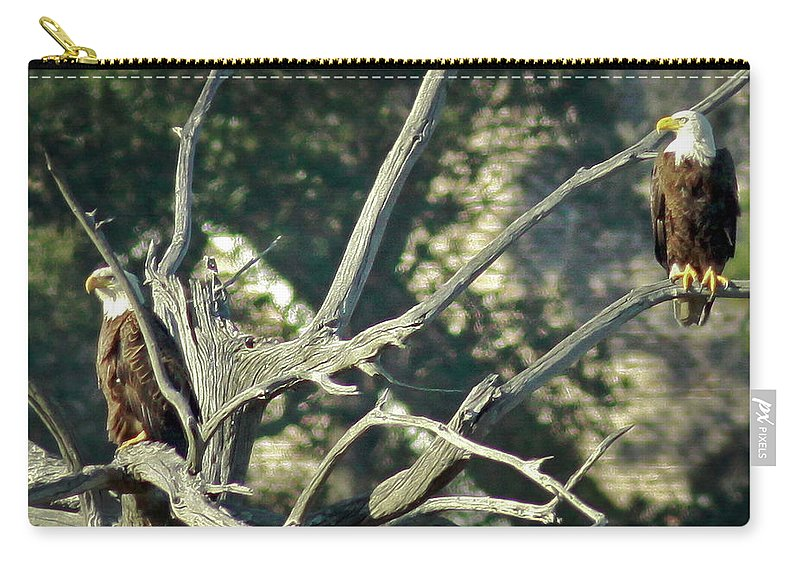 Bald Eagle Carry-all Pouch featuring the photograph On Watch by Phill Doherty