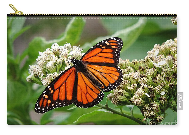 Monarch Butterfly Carry-all Pouch featuring the photograph Once Upon A Butterfly 001 by Robert ONeil