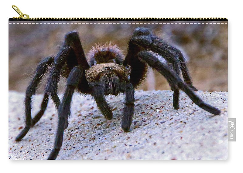 Texas Carry-all Pouch featuring the photograph One Big Hairy Spider by Rebecca Morgan