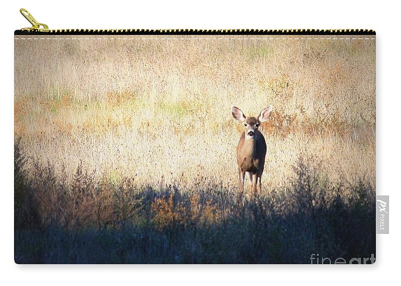 Wildlife Carry-all Pouch featuring the photograph One Cute Deer by Carol Groenen