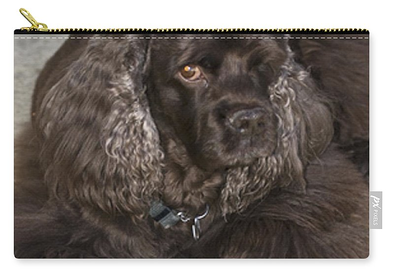 Animals Carry-all Pouch featuring the photograph One Eyed Jack by Norman Andrus