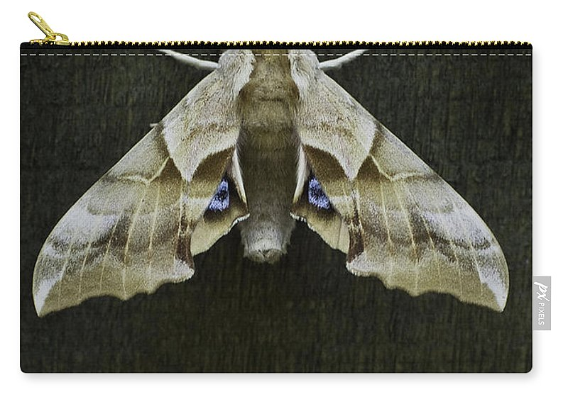 Moth Carry-all Pouch featuring the photograph One Eyed Sphinx Moth by Herman Robert
