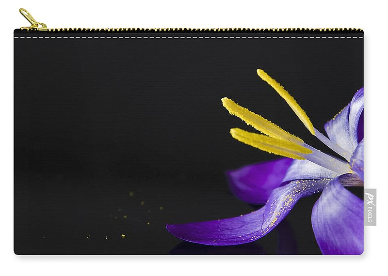 Crocus Carry-all Pouch featuring the photograph One Flower by Svetlana Sewell